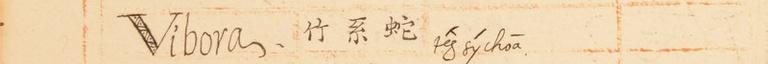 20170414漳州話辭匯-6
